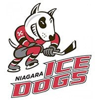 Niagara Ice Dogs logo