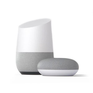 Google Home and Google Home Mini